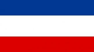 Почему у Словении и Словакии флаг похожий на русский