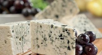 Как готовить блюда с сыром