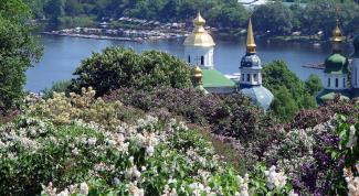 Когда в Киеве цветут каштаны