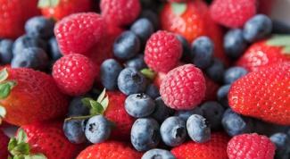 How to freeze fresh berries pureed