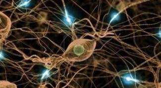 Почему нерв называется