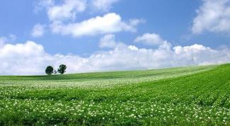 Что такое общая долевая собственность на земельный участок