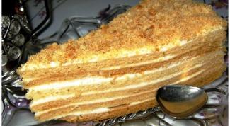 Как просто испечь вкусный медовый торт со сметанным кремом