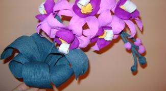 Как сделать орхидею из гофрированной бумаги