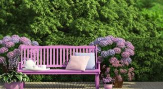 Как выбрать мебель для дачи и сада