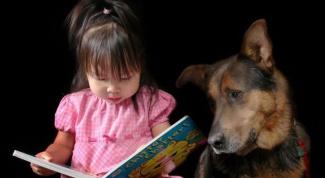 Как помочь ребенку преодолеть страх собак?