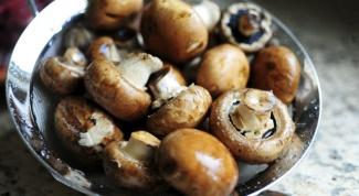 Как чистить свежие грибы?