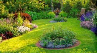 Как упростить работу на огороде