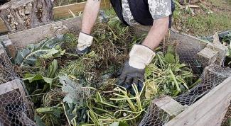 Какие садовые отходы пригодны для компоста