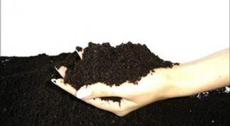 Как сделать биогумус в домашних условиях