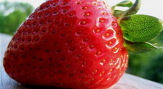 How to grow sweet and big strawberries