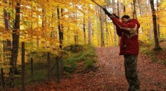 Как получить охотничью лицензию