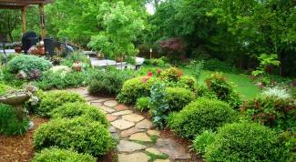 Садовая дорожка из камня – какую породу выбрать