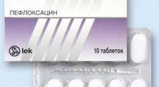 """Абактал"": общие сведения"