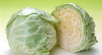 10 recipes tasty salads from fresh cabbage