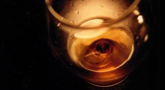 Как выбрать и купить бокалы для коньяка