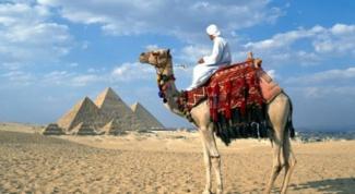 Туры в Египет: стоит ли покупать заранее