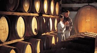 Изучаем сорта вин: шардоне, каберне, мерло и др.