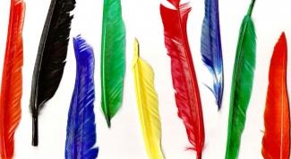 Что означает татуировка перо с птицами