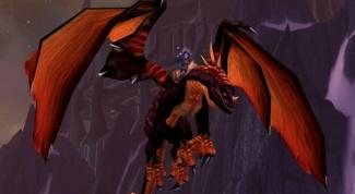 Где можно купить дракона в игре WoW ?