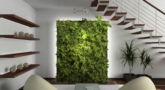 Современные тенденции в декорировании стен