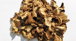 Жюльен из сухих грибов