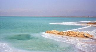 Почему Мертвое море так называется