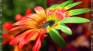 Как в фотошопе поменять цвета местами