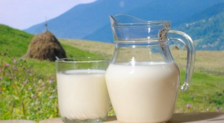 Kaoe useful milk: cow or goat
