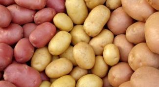Как на глаз определить сорт картофеля