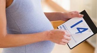 Как определить сроки продолжительности беременности