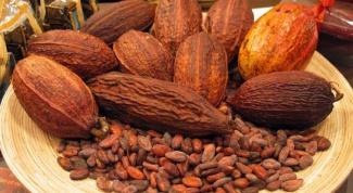Какими свойствами обладает какао-масло