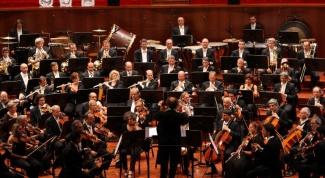 Какие музыкальные инструменты входят в состав симфонического оркестра