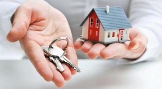 Что должно быть указано в договоре аренды