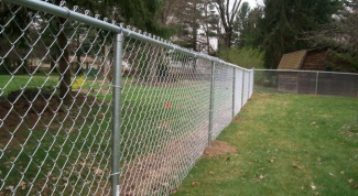 What should be the height of the fence between the garden plots