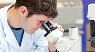 Что такое клетка и какие у нее функции