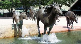 В каких городах  мира есть памятники лошадям