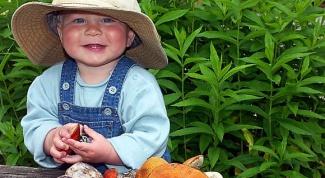 Можно ли детям есть грибы