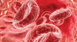 Чем опасен высокий гемоглобин