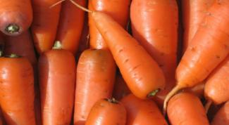 Как вырастить вкусную и сладкую морковь