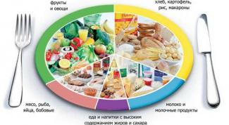 Как правильно питаться, чтобы не набирать лишний вес, похудеть и не оказывать нагрузку на организм