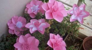 Как сделать изысканные бумажные цветы