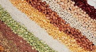 Какие семена мы едим
