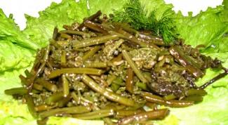 Рецепты блюд с папоротником