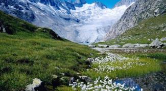 Почему Швейцария привлекательна для туристов
