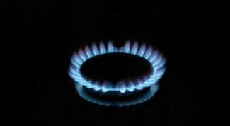 Что лучше: варочная панель или газовая плита?