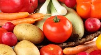 Какие бактерии улучшают азотное питание растений