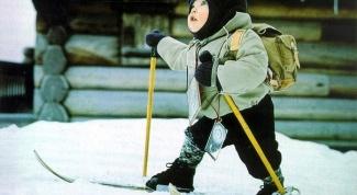 Какие существуют виды лыжного спорта