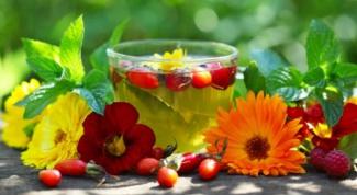 Какие травы можно пить вместо чая