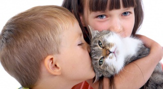 Секреты воспитывания доброго ребенка